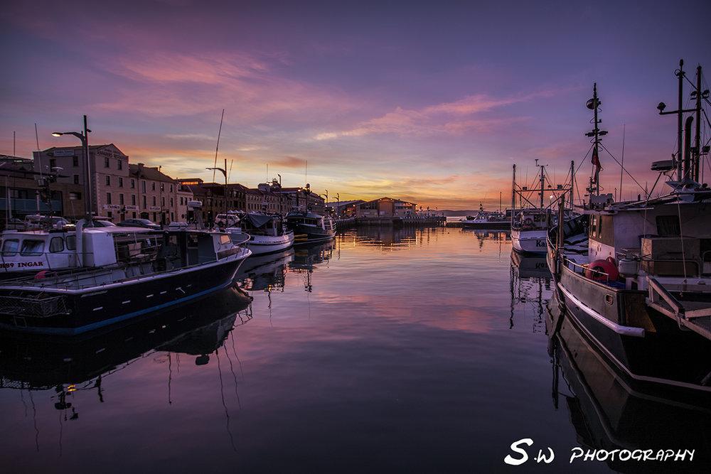 Victoria Dock - Hobart