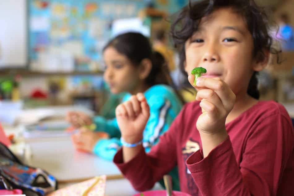 We have supported students with food education