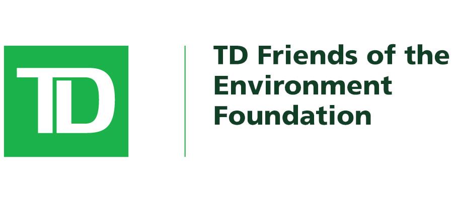 td-friends-environment.jpg