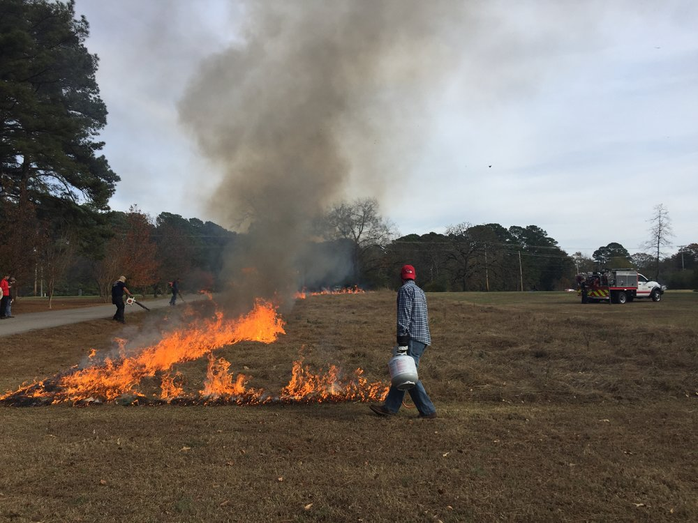 Controlled burn of invasive species to develop a small urban prairie at the Bryant Arkansa Office.