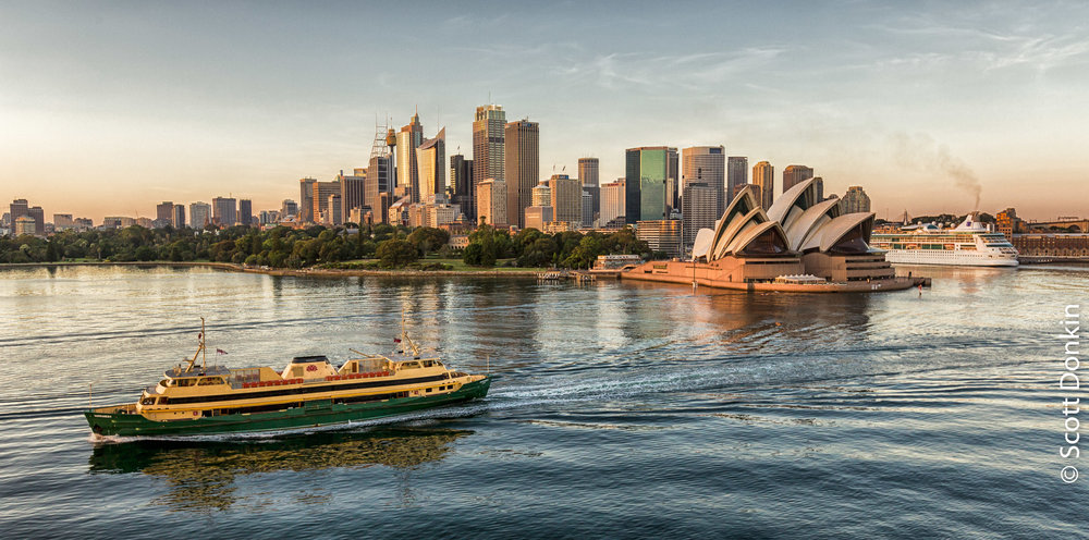 Sydney city skyline and harbour at dawn.