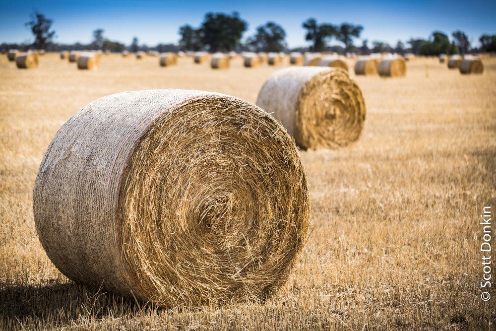 Bales of hay. Miepoll, Cenrtral Victoria.