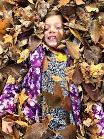 c in leaves.jpg