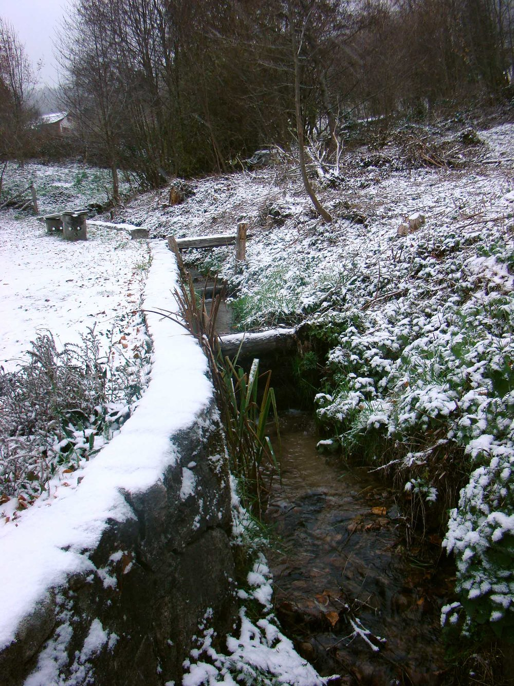 snowy_creek.jpg