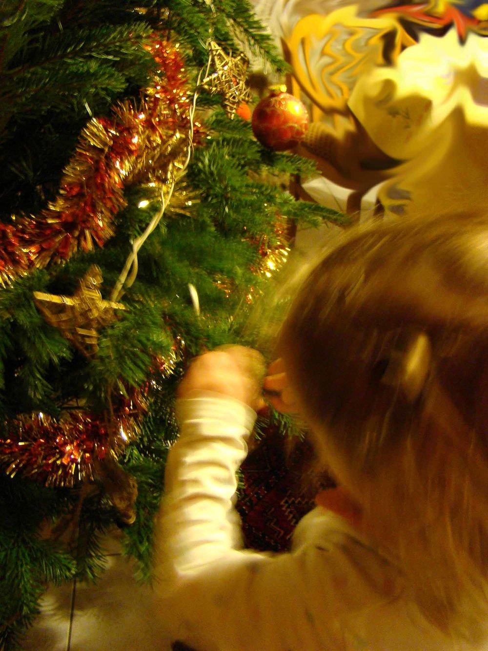 Delphine_decorations.jpg