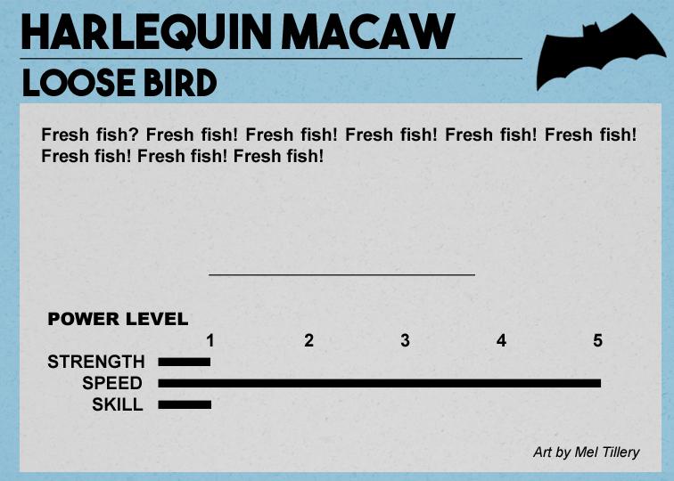 macaw2.jpg