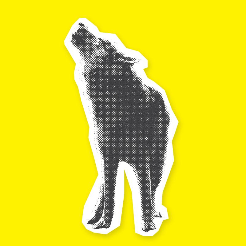 Wolf_Return_SML_01.jpg