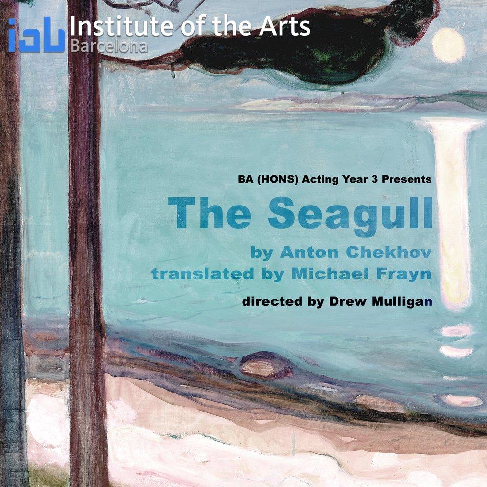 seagull -ACT Y3.jpg