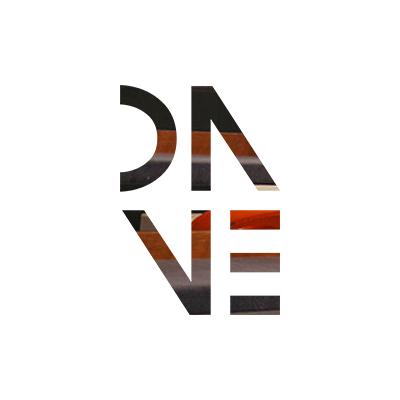 DNVE_Logo_project_03.jpg