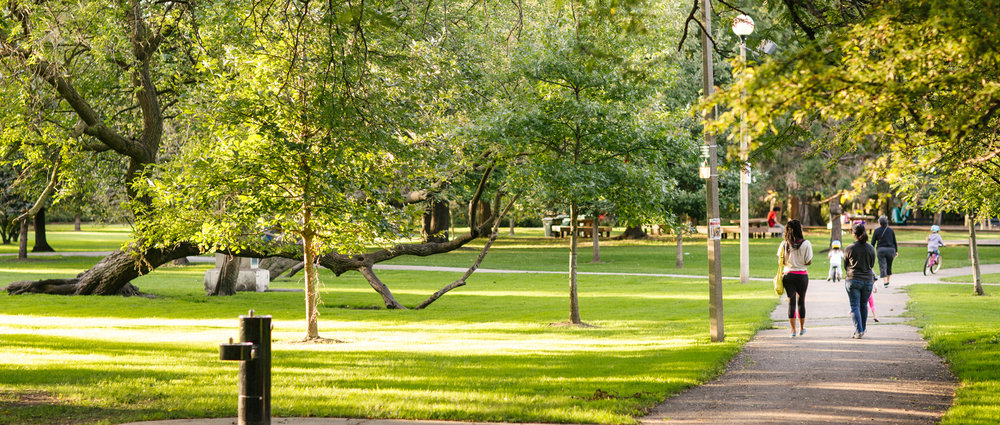 Park Project_Indian Boundary Park_2000px-032 cropped.jpg