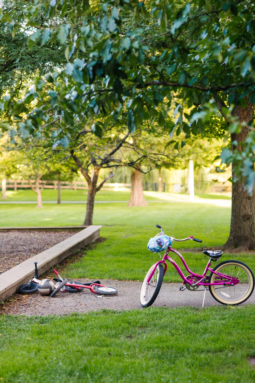 Park Project_Indian Boundary Park_2000px-039.jpg