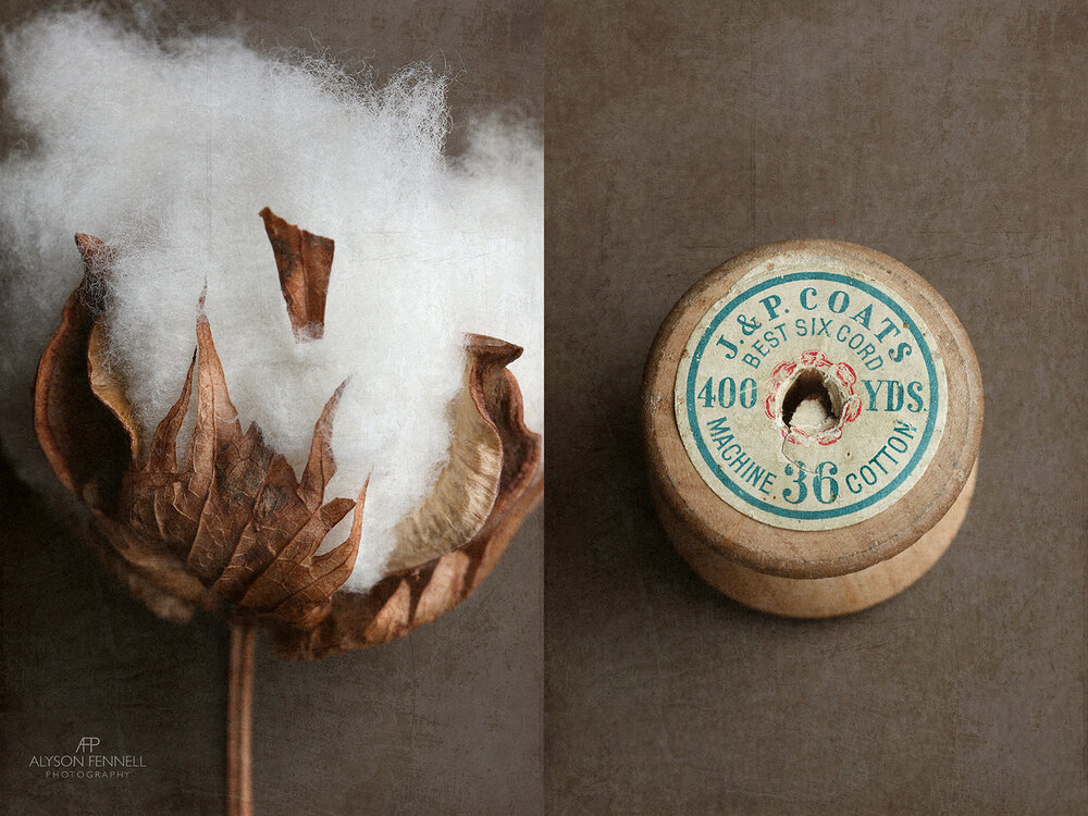 Cotton and Vintage Cotton Reel