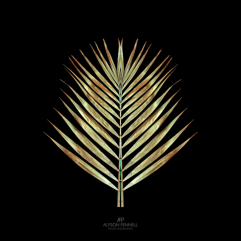 Gold Deco Palm.