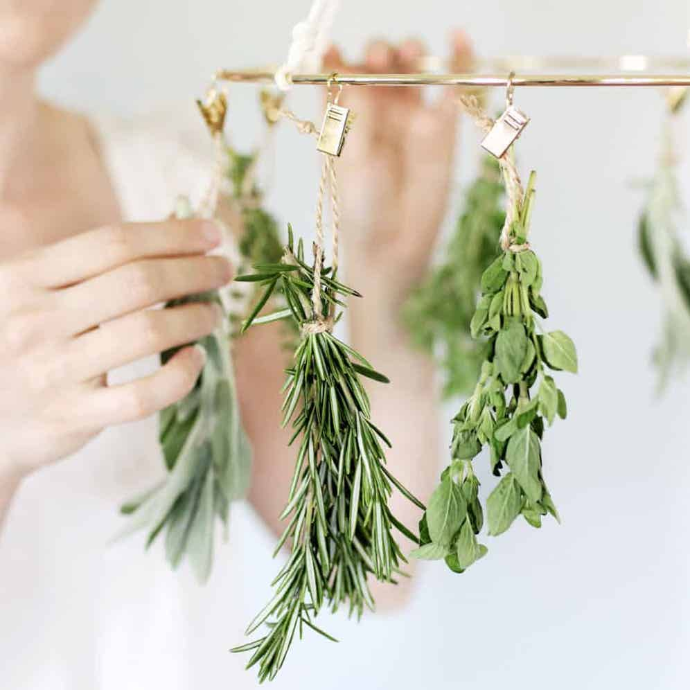 Herb-Drying-Rack-1.jpg