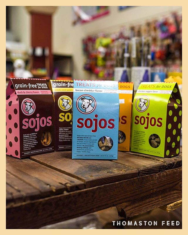 Bon A-pet-treat! 🦴 Any dog will love the variety of all-natural flavors @sojospetfood treats has to offer. Feed your pet only with the best🐶