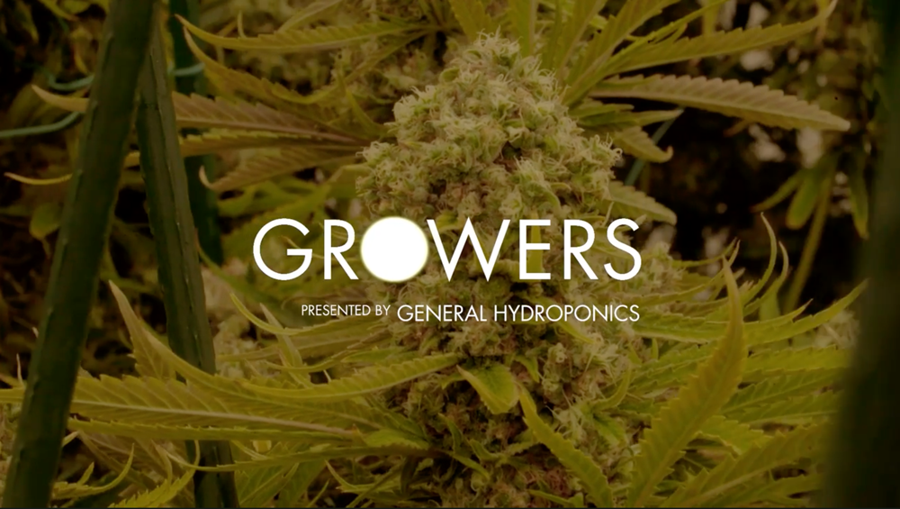 growers.png
