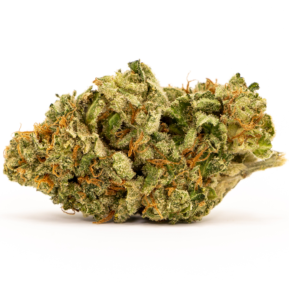 White Widow Cannabis Strain: Everything You Need To Know