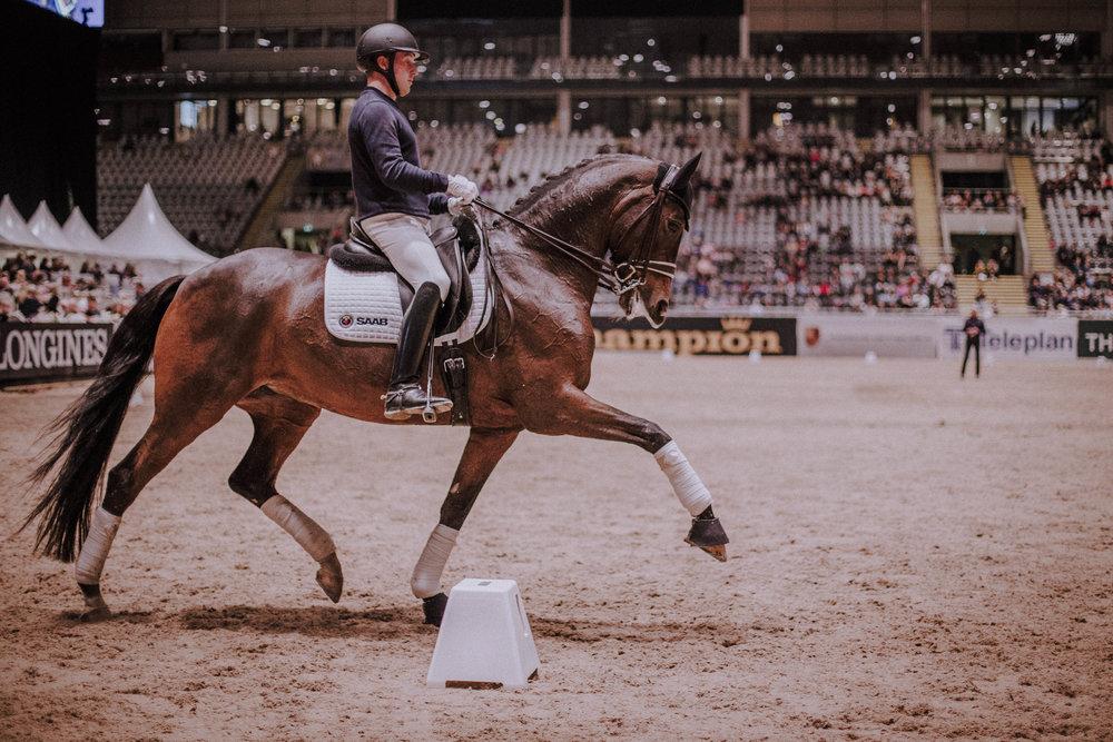 Brinks berider og Grand Prix-hesten som var sist ut i clinicen under Kingsland Oslo Horse Show.