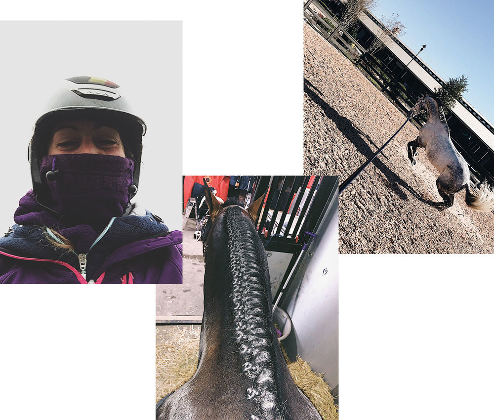 Everyday snapshots: Marta in a freezing selfie, braiding skills in Tryon, lunging time with Harley