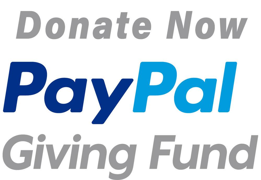 pp_giving_fund_v_rgb.jpg