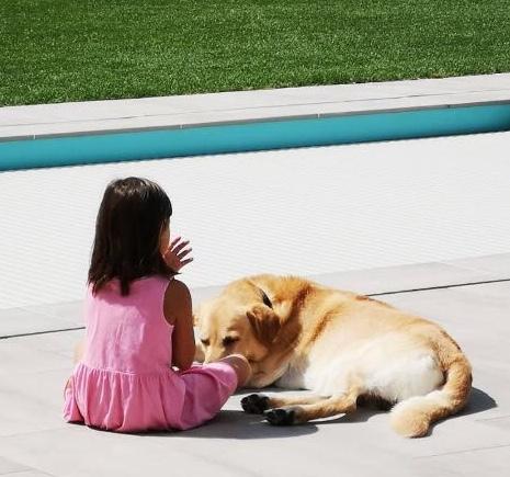 Hunde sind nicht alles im Leben, aber sie machen alles im Leben lebenswert.   Roger Caras