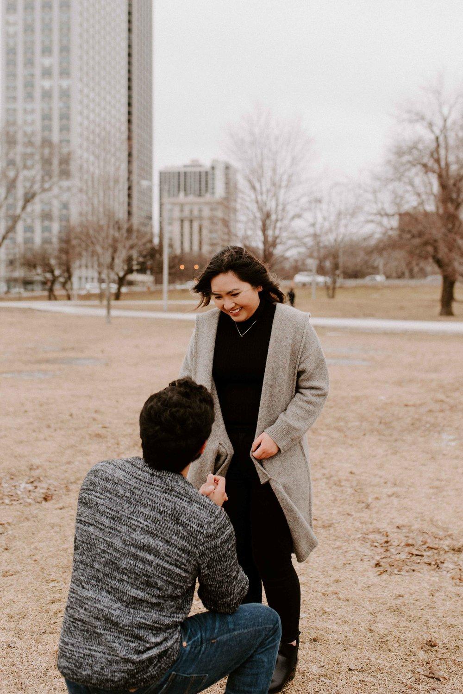 Chicago Proposal Photographer Nikki and Rodrigo-33.jpg