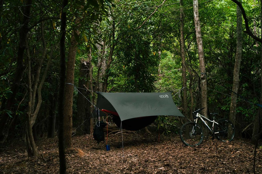 forest-camping-2.jpg