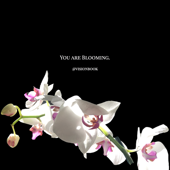 You are blooming.jpg