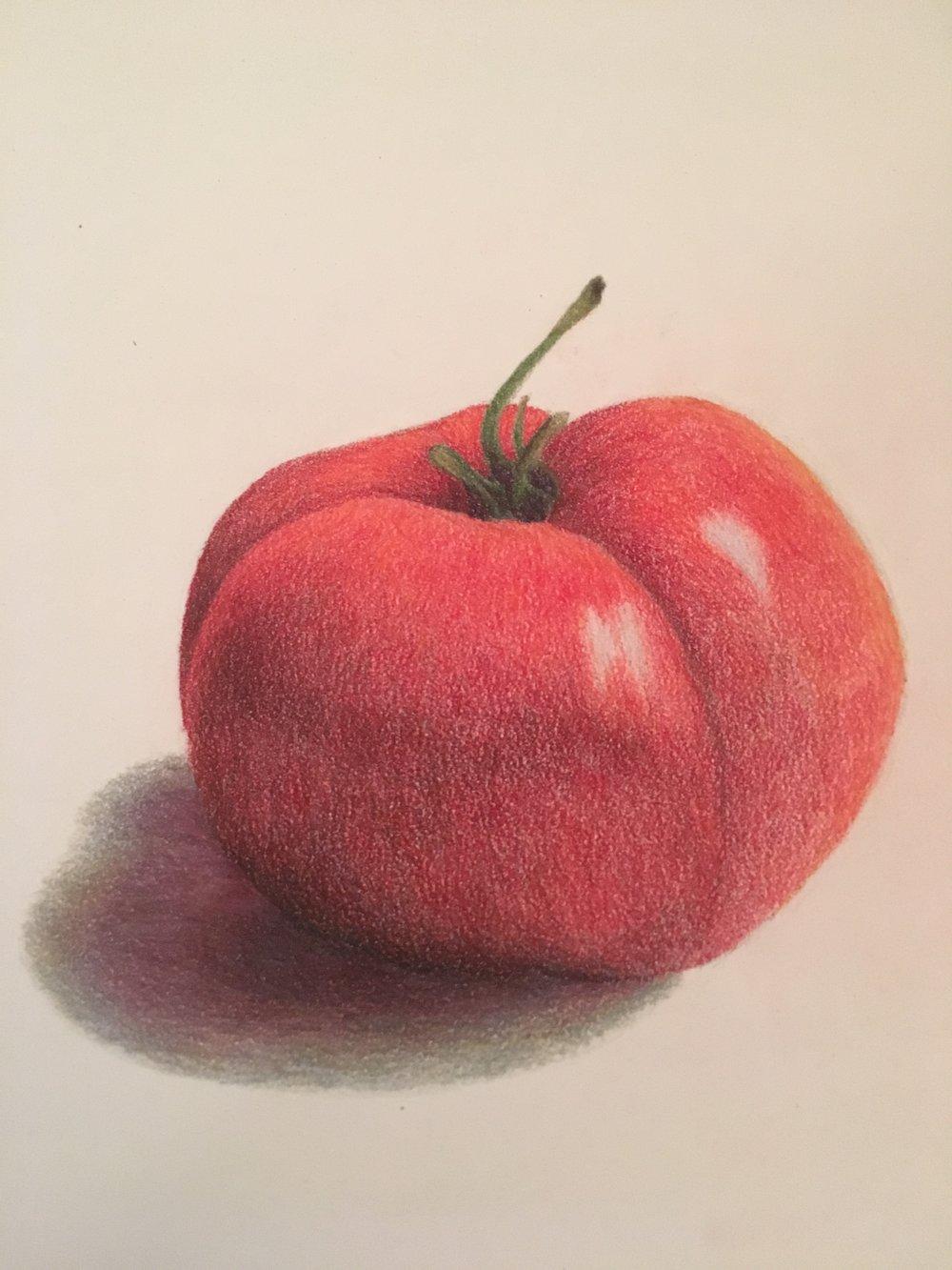 Abigail's tomato.JPG