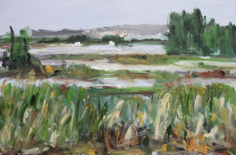 Fern Ridge Marsh Oil on Canvas 24 x 36 $450.00