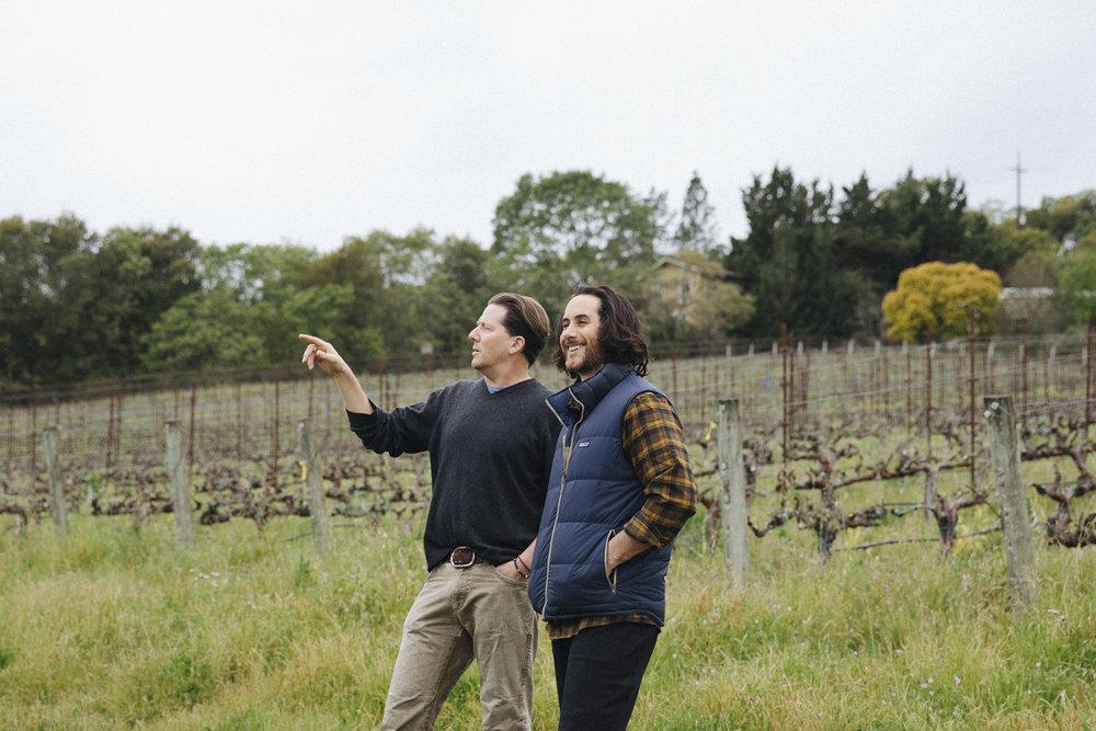 Pax Wines - Organic Wine Club - Syrah From the Hills -