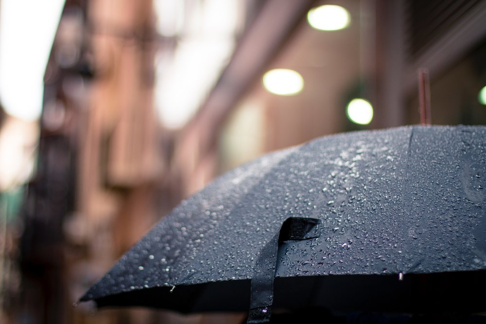 rain-rainy-umbrella-17739.jpg
