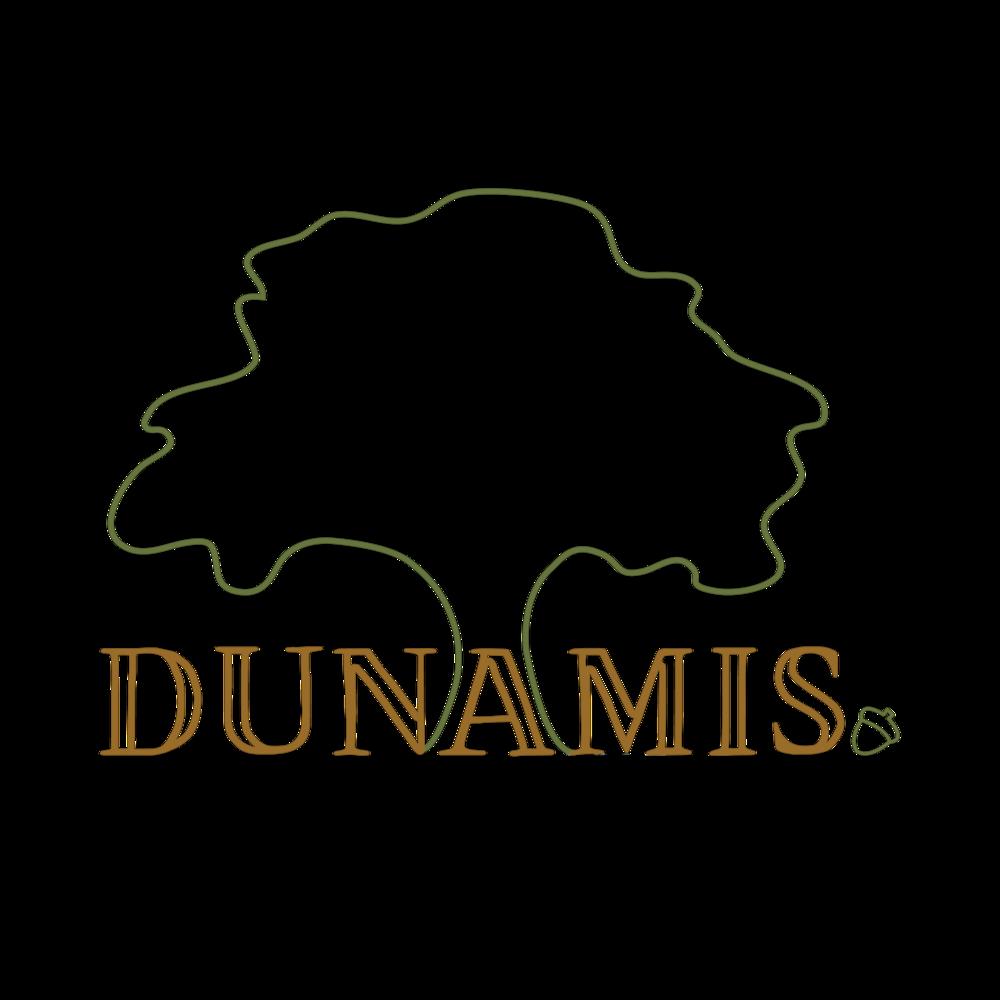 Dunamis Logo.png