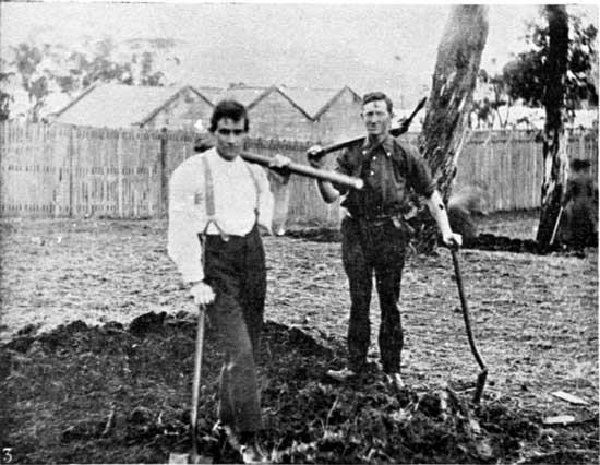 Preparing the site for Pte Scott's tree, the first of the New Town row (Powder Magazine in background), 13/7/1918.  [Weekly Courier 18th July 1918 p19]