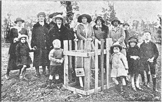 Family gathered at the tree for Dvr Lighten.  [Tasmanian Mail 8th August 1918 p18]