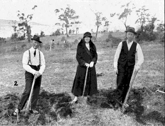 Miss Addison and party preparing spot for her brother's tree, 22/6/1918.  [Tasmanian Mail 27th June 1918 p19]