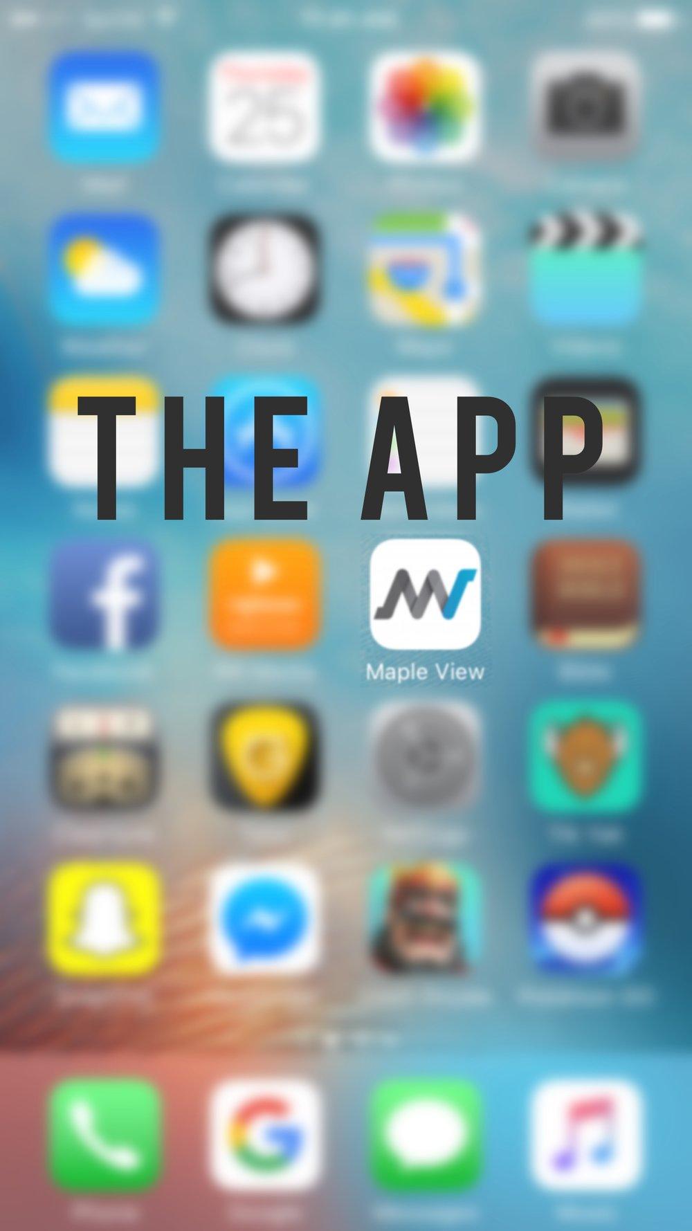 The App 2.jpg