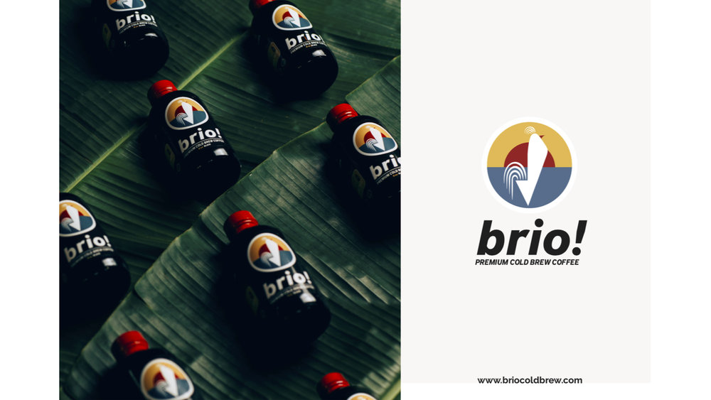 brio!_Pitch Deck_12062018-1.jpg
