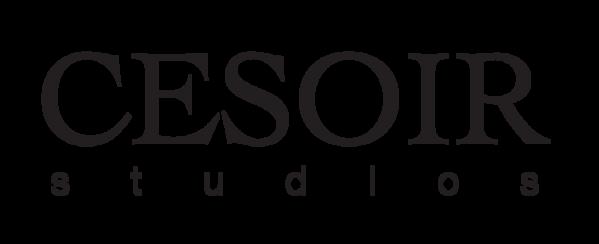 Cesoir Studio