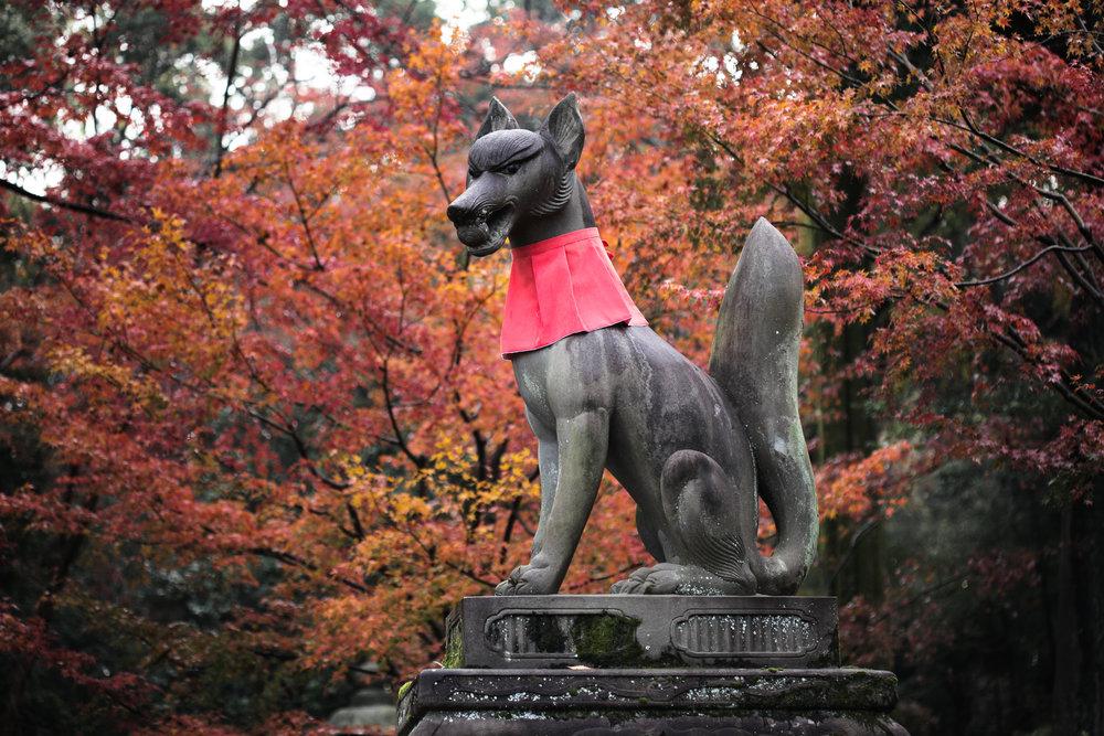 A messenger of the gods at Fushimi Inari.