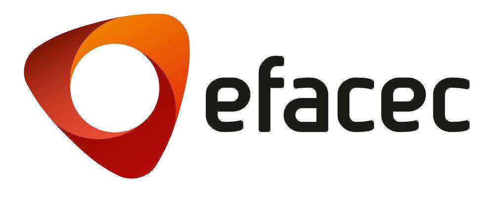 EFACEC - Gestão do Risco/Segurança