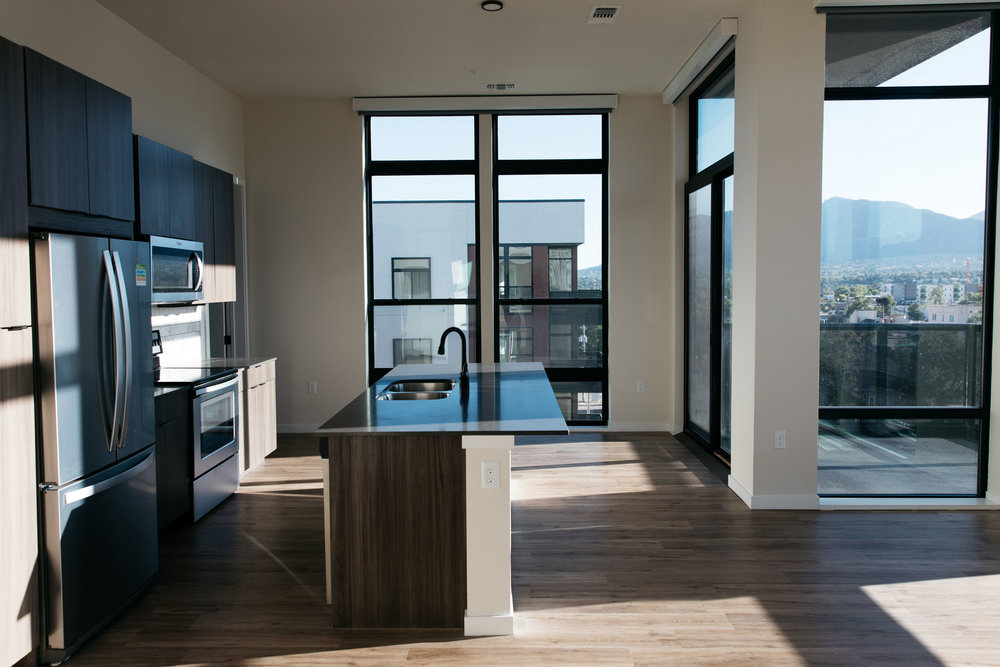 eco333-downtown-apts-18.jpg
