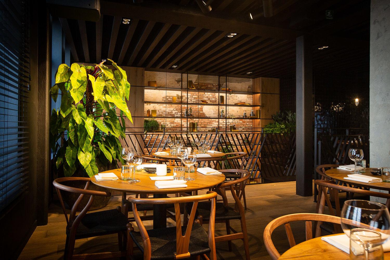 Discover Tomorrowland's 'MESA' Restaurant