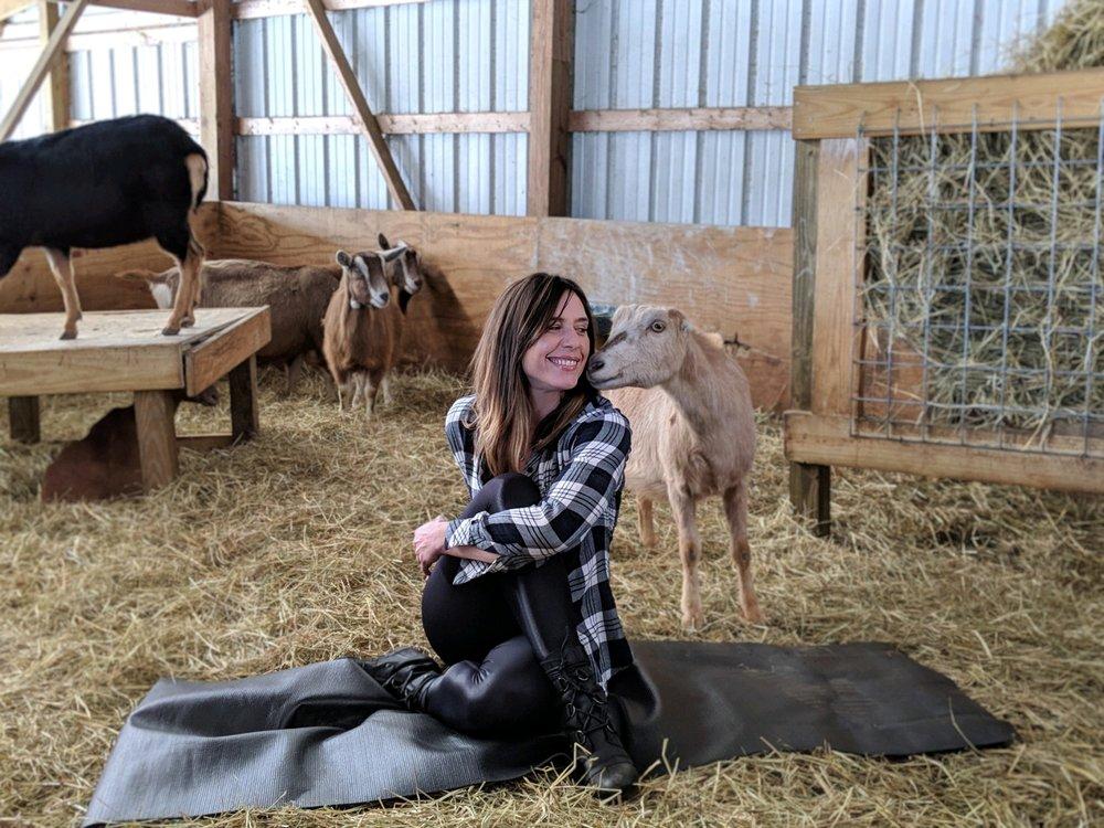 goat3.jpg