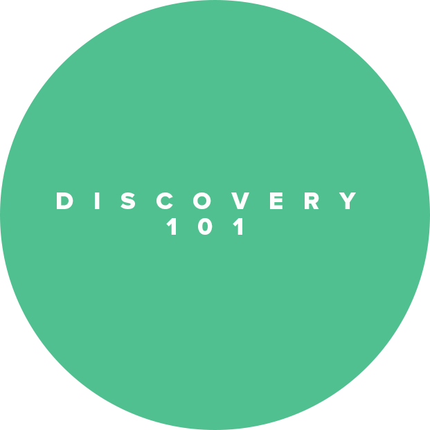 DISCOVERY 101_LOGO.png
