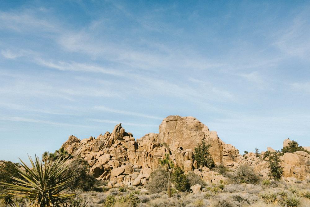california_0101.jpg