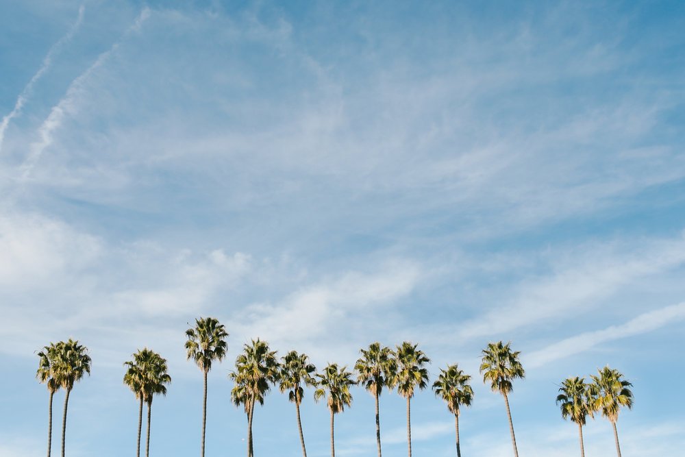 california_0263.jpg