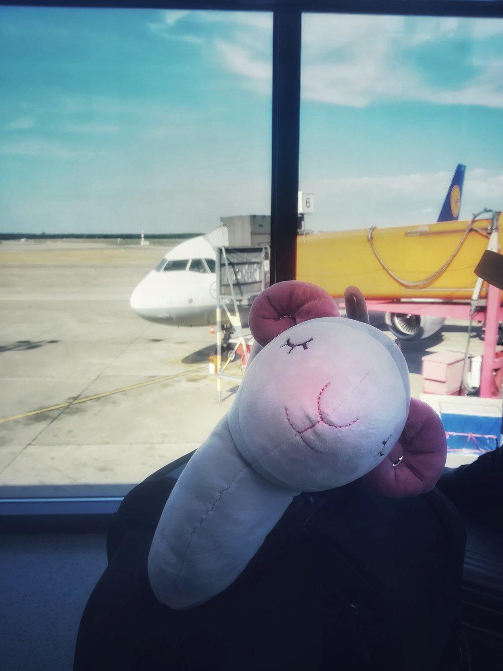departure-02