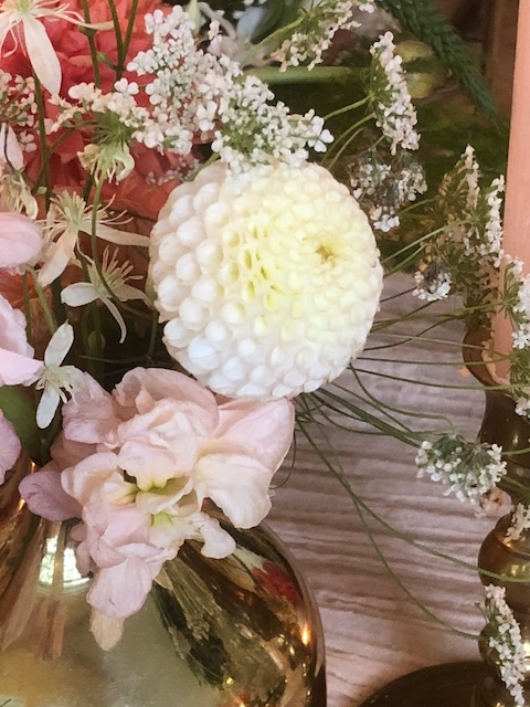 white dahlia.jpg