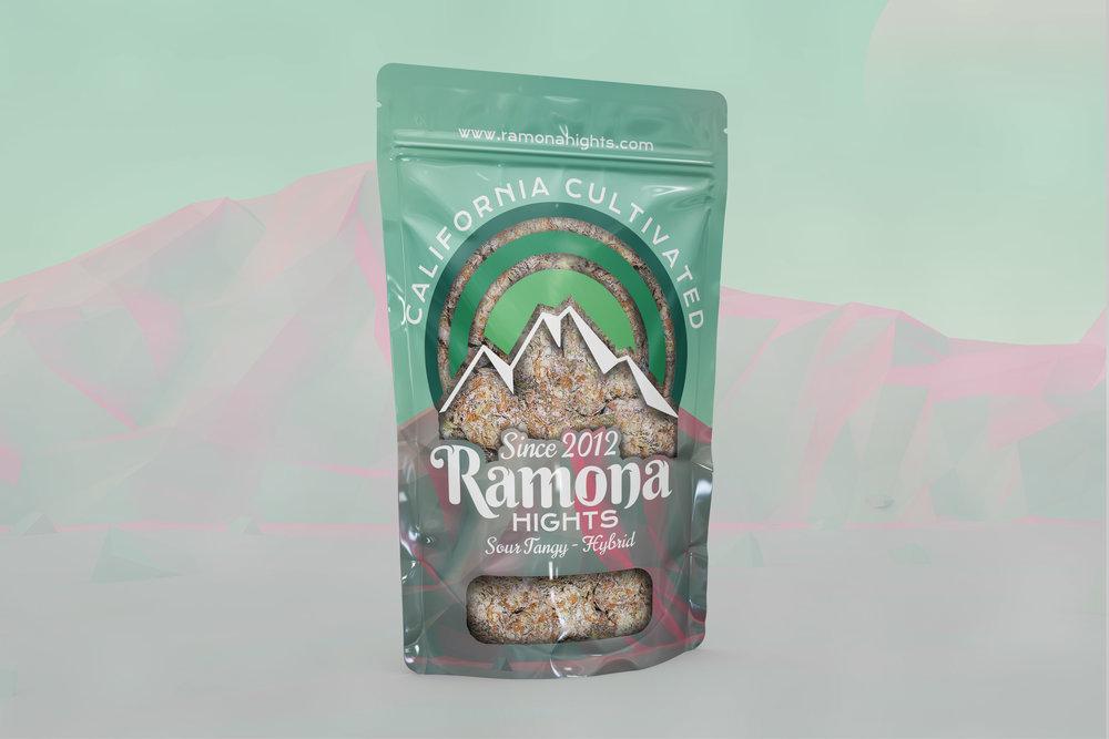 RAMONA-HIGHTS_4_SOUR-TANGY.jpg